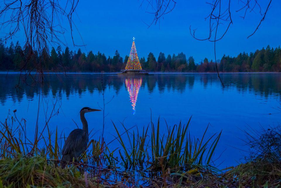 Vancouver Christmas lights displays for kids